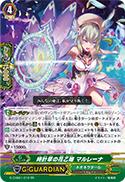 時計草の花乙姫 マルレーナ