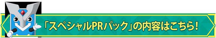 「スペシャルPRパック」の内容はこちら!
